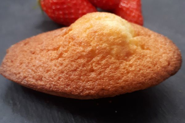 madeleines moelleuses et gourmandes