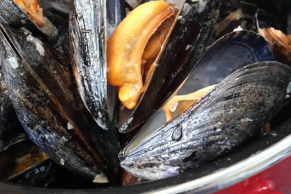 Recette Moules marinières