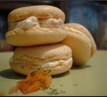 Recette Macarons au saumon fumé et ricotta