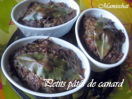 Recette PATE DE CANARD