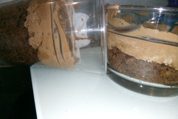 Tiramisu au Nutella sans oeufs