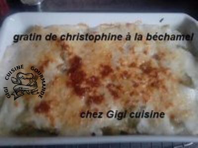 gratin de christophine