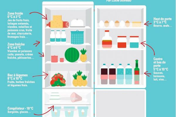 comment bien ranger son réfrigérateur ?