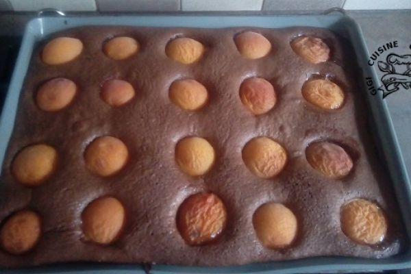 Recette gâteau abricots et chocolat