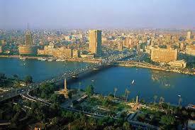 Courgettes du Caire