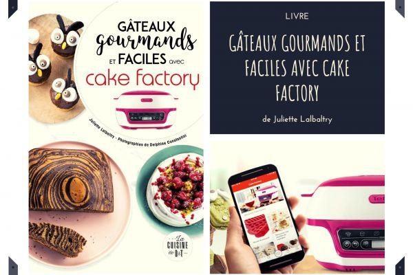 Recette Gâteaux gourmands et faciles avec cake factory