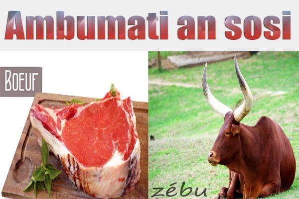 Viande en sauce / Ambumati an sosi