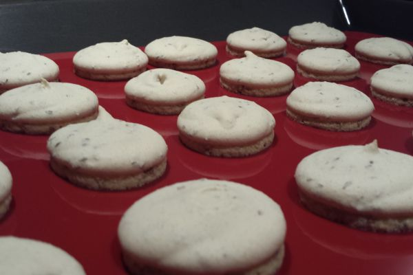 Recette Anis bredele (biscuit de Noël )